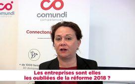 Claire Pascal, Directrice Générale de Comundi