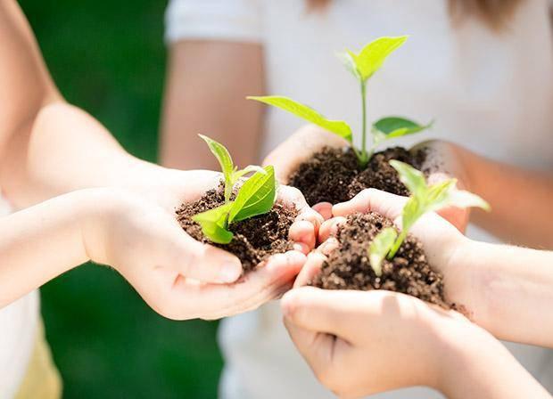 Formation : intégrer l'économie verte au développement de votre structure d'accueil petite enfance